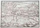 Ambito tedesco seconda metà sec. XVI, Parabola del buon seminatore