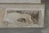 Scultore dell'Italia meridionale sec. XIII, Lastra con cane