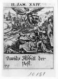 Küsel J. C.-Küsel M. M. (1688-1700), Angelo diffonde la peste nel popolo d'Israe
