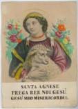 Calcografia Briola P. seconda metà sec. XIX, S. Agnese