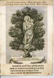 Calcografia Remondini seconda metà sec. XVIII, Madonna del pino con Gesù Bambino