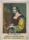 Calcografia May G. E. e Wirsing seconda metà sec. XIX, S. Cecilia