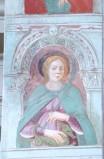 Del Zotto G. (1496), Santa Margherita di Antiochia